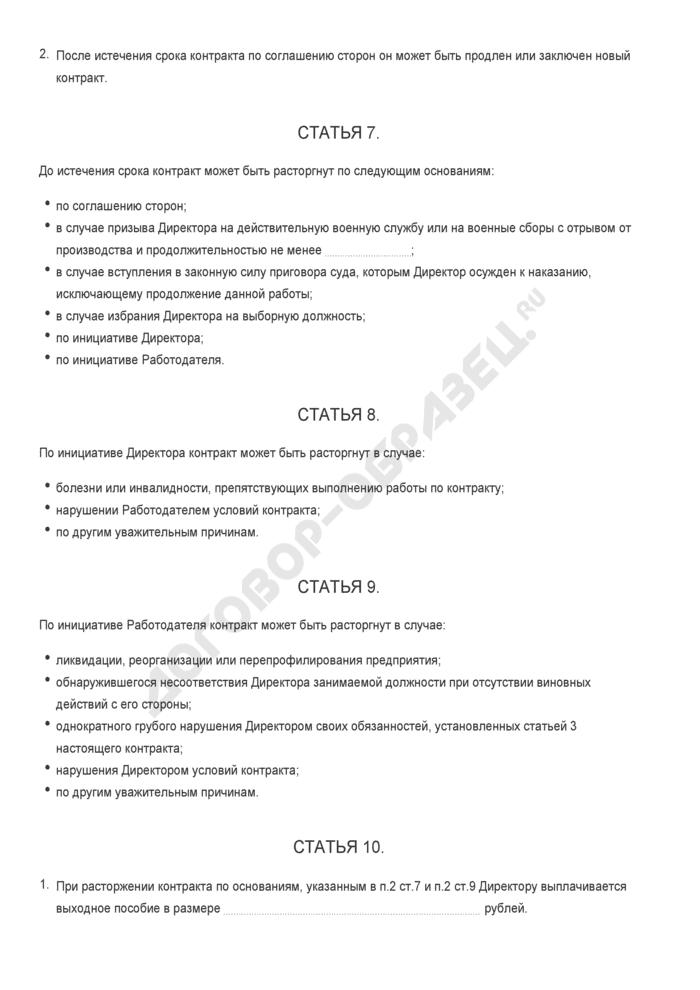 Бланк трудового контракта с директором предприятия. Страница 3