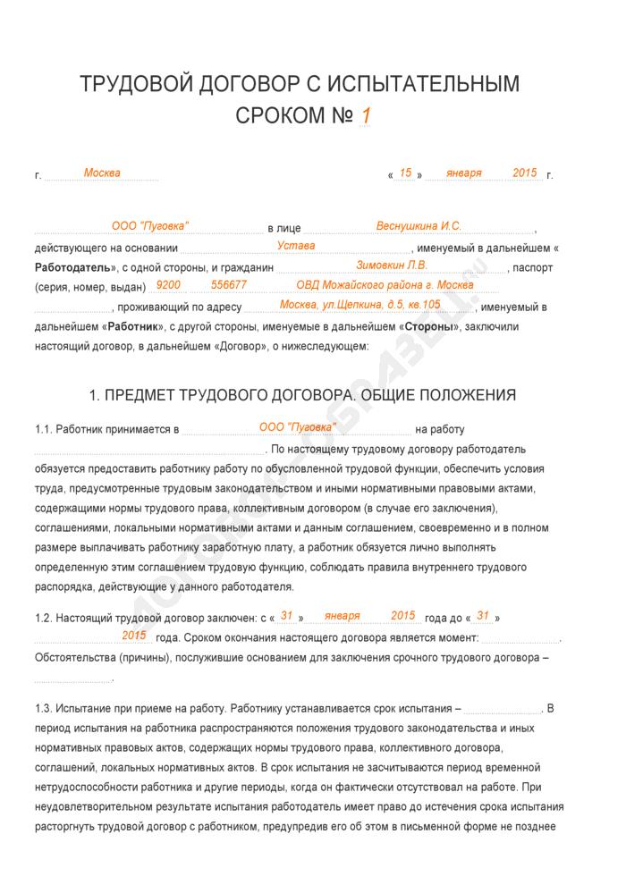 Заполненный образец трудового договора с испытательным сроком. Страница 1