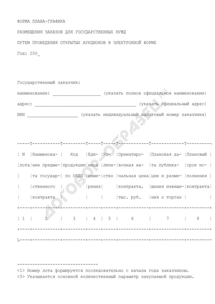 Форма плана-графика размещения заказов для государственных нужд путем проведения открытых аукционов в электронной форме. Страница 1