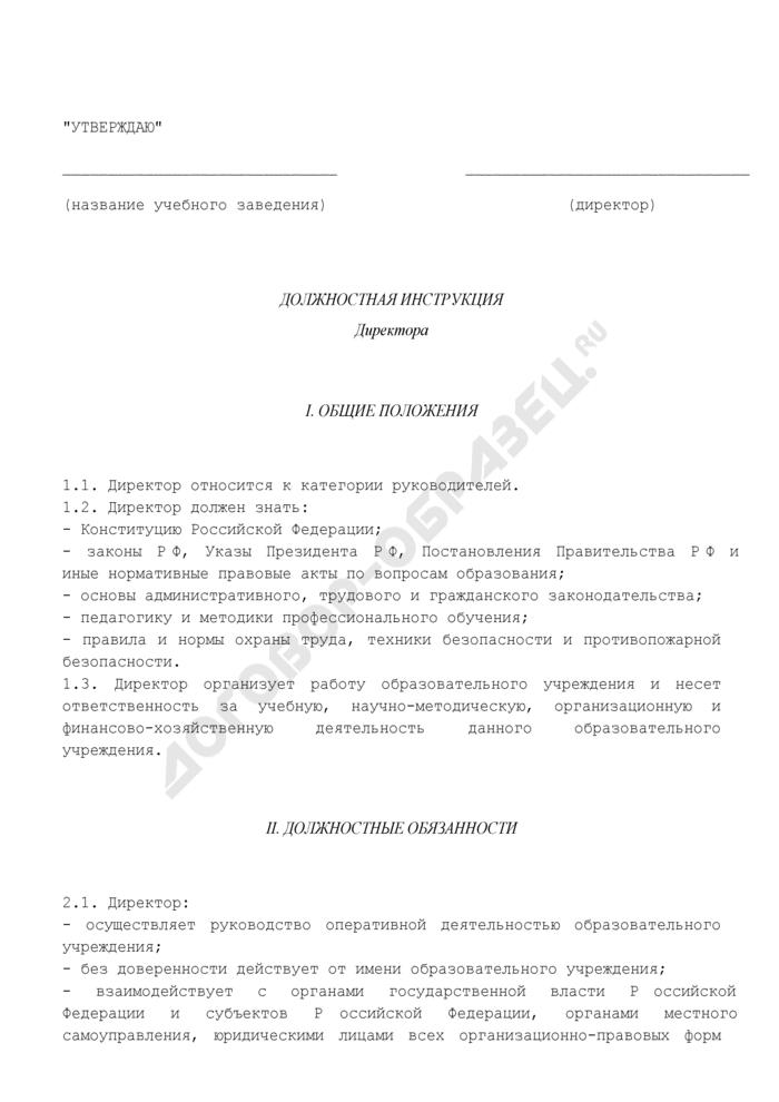 Должностная инструкция директора (для работников учреждений дополнительного профессионального образования). Страница 1