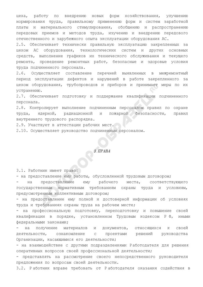 Должностная инструкция начальника цеха атомной станции. Страница 3