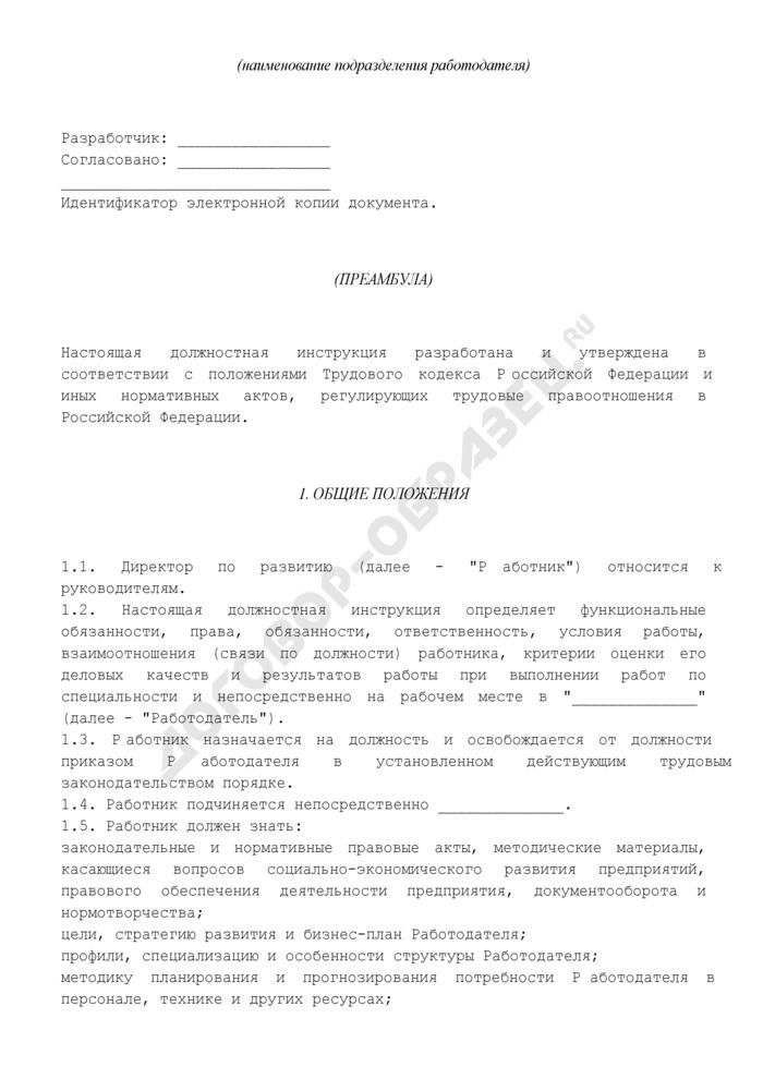 Должностная инструкция директора по развитию. Страница 2