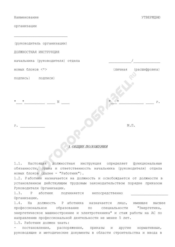 Должностная инструкция начальника (руководителя) отдела новых блоков. Страница 1