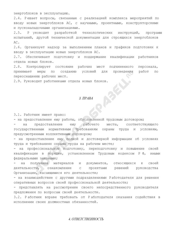 Должностная инструкция начальника (руководителя) отдела новых блоков. Страница 3