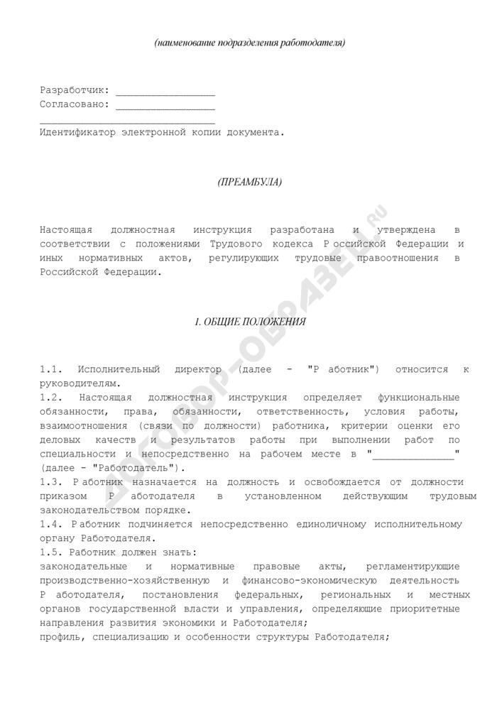 Должностная инструкция исполнительного директора. Страница 2