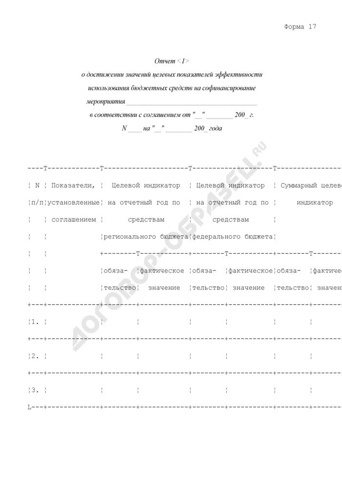 Отчет о достижении значений целевых показателей эффективности использования бюджетных средств на софинансирование мероприятия. Форма N 17. Страница 1