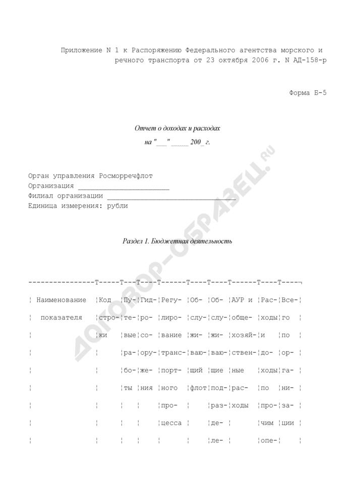 Отчет о доходах и расходах организаций морского и речного транспорта. Форма N Б-5. Страница 1