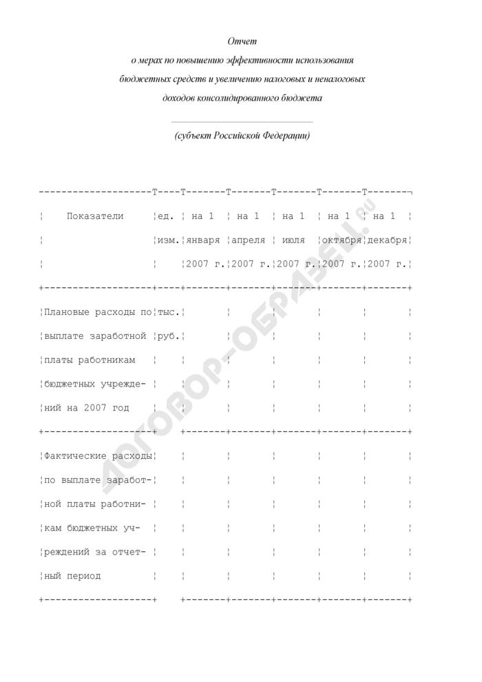 Отчет о мерах по повышению эффективности использования бюджетных средств и увеличению налоговых и неналоговых доходов консолидированного бюджета субъекта Российской Федерации. Страница 1