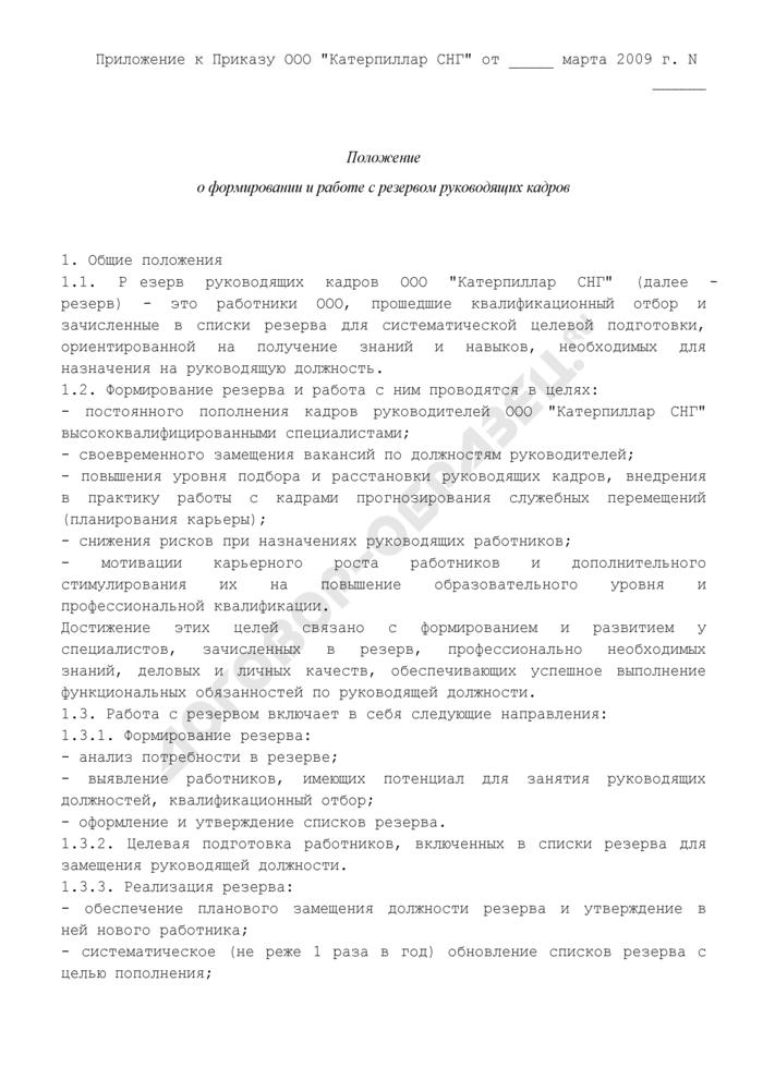Положение о формировании и работе с резервом руководящих кадров (примерная форма). Страница 1