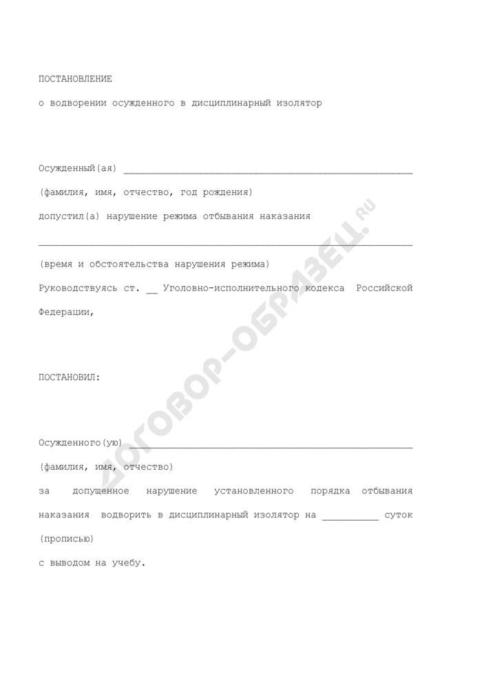Постановление о водворении осужденного в дисциплинарный изолятор. Страница 1