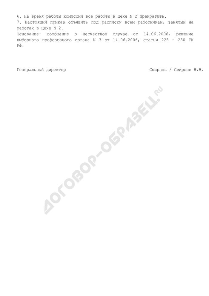 Образец приказа о создании комиссии по расследованию несчастного случая на производстве. Страница 2