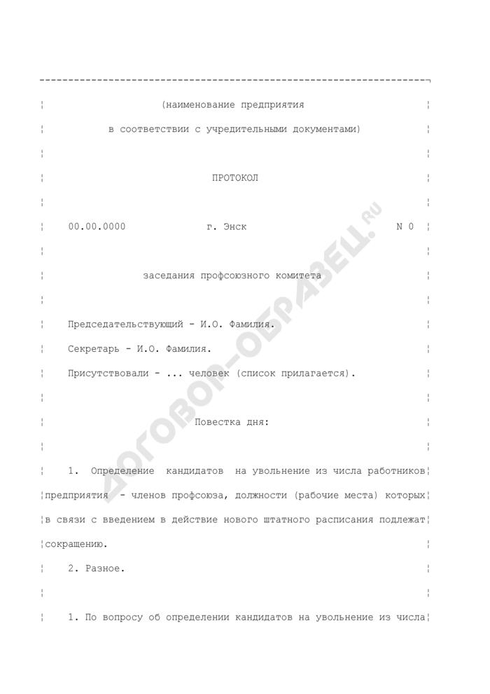 Протокол заседания профсоюзного комитета предприятия. Страница 1