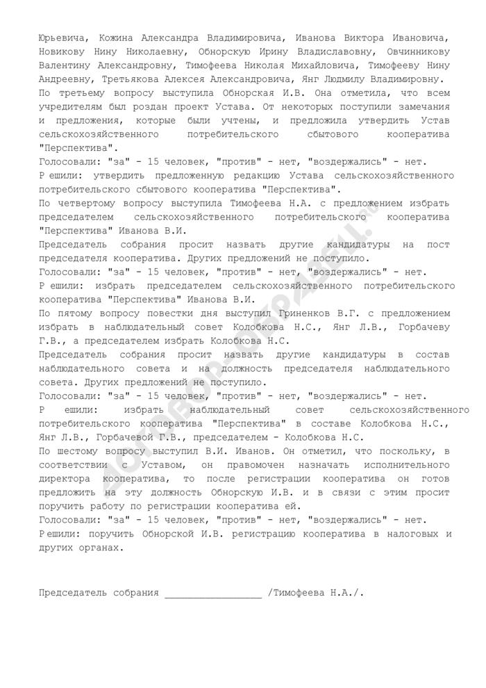 Протокол общего организационного собрания учредителей сельскохозяйственного потребительского сбытового кооператива (пример оформления). Страница 3