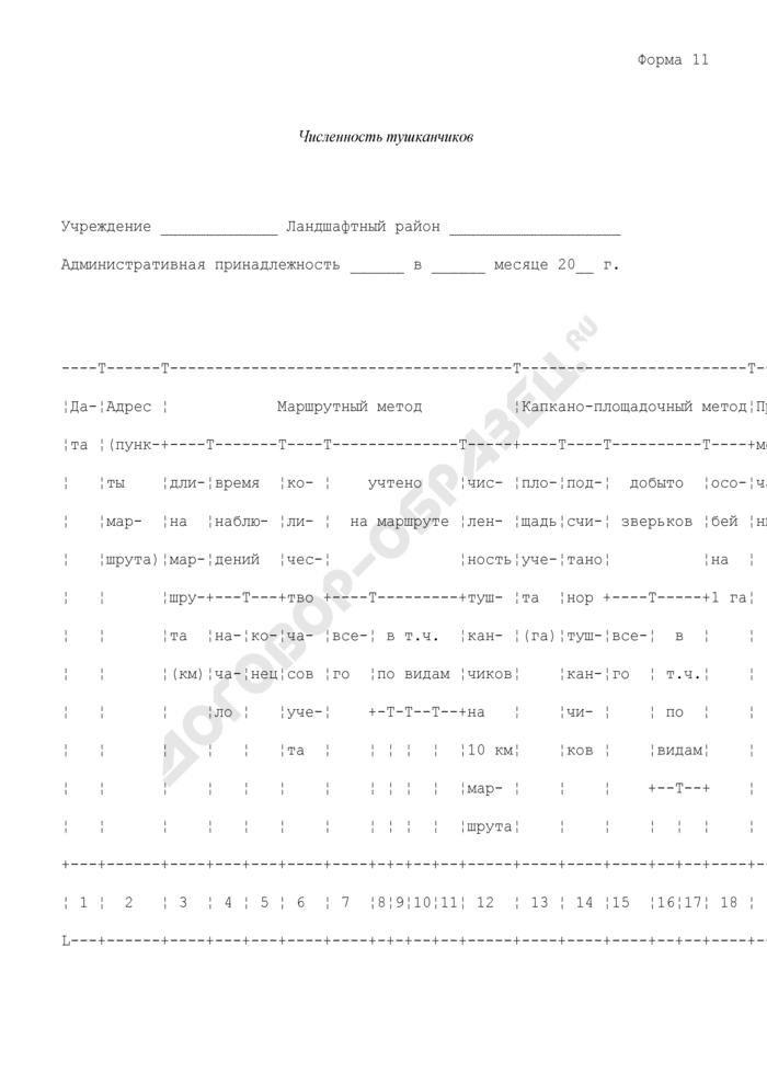 Учет численности тушканчиков. Форма N 11 (рекомендуемая). Страница 1