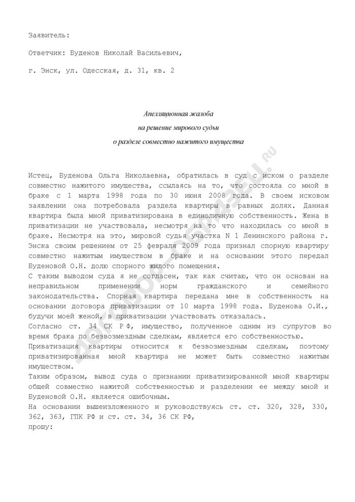 Апелляционная жалоба на решение мирового судьи о разделе совместно нажитого имущества (пример). Страница 1