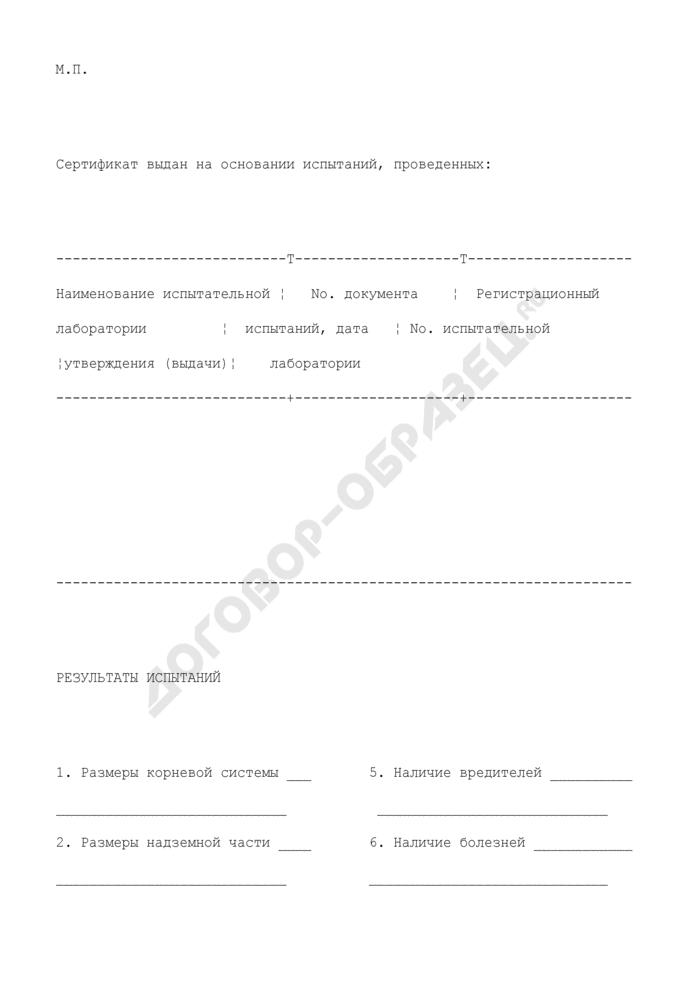 Сертификат на посадочный материал. Форма N 11. Страница 3