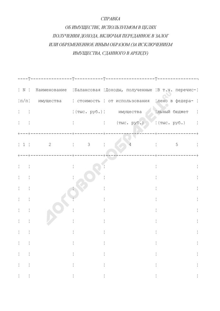 Справка об имуществе, используемом в целях получения дохода, включая переданное в залог или обремененное иным образом (за исключением имущества, сданного в аренду). Страница 1