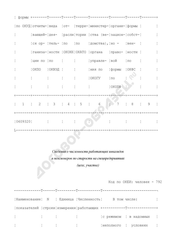 Сведения о численности работающих инвалидов и пенсионеров по старости на спецпредприятии (цехе, участке). Форма N 2-Т (собес). Страница 3
