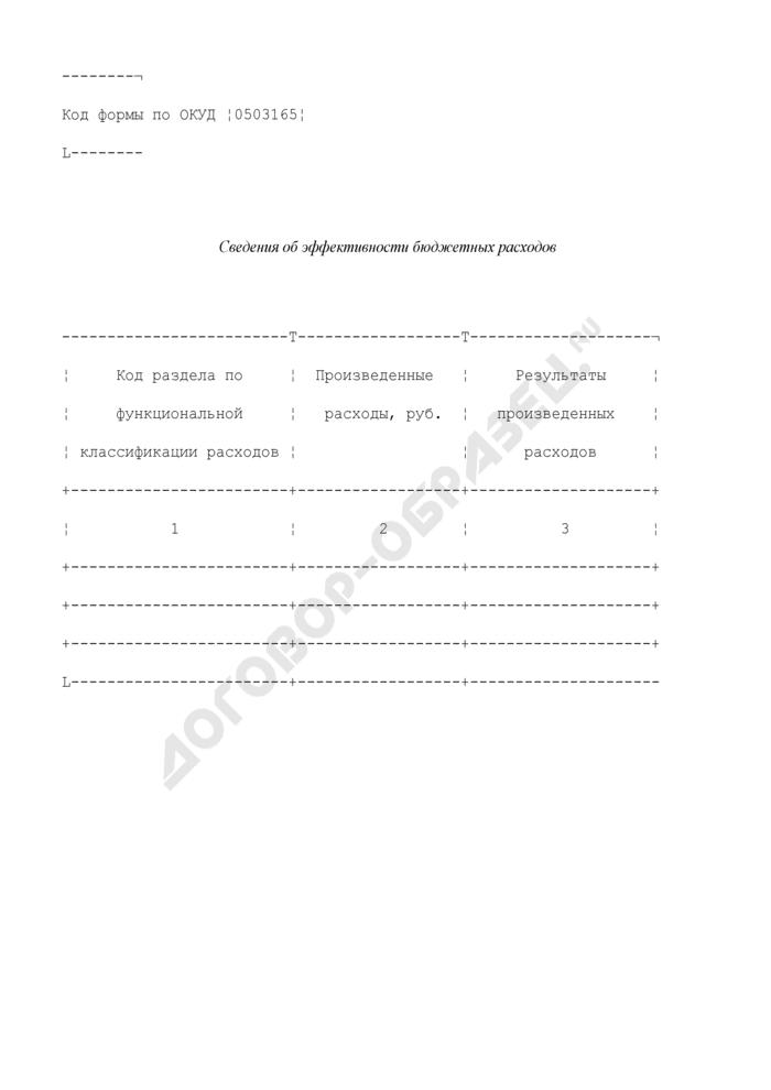 Сведения об эффективности бюджетных расходов (приложение к пояснительной записке к бюджетной отчетности территориального фонда обязательного медицинского страхования). Страница 1