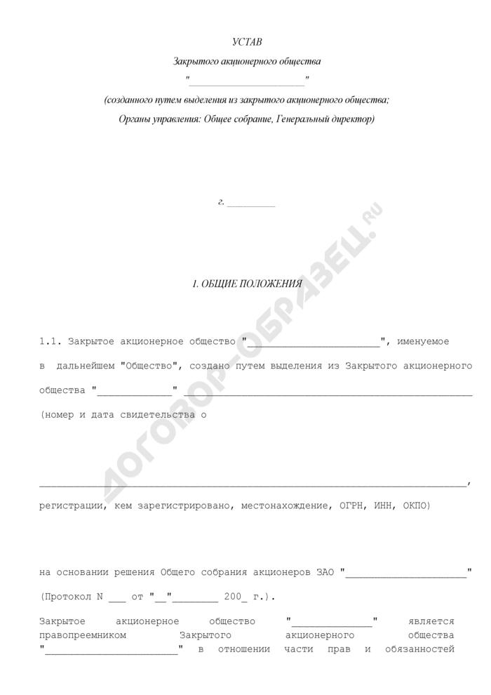 Устав закрытого акционерного общества, созданного в результате выделения (учредитель остается единственным акционером; органы управления: единственный акционер, генеральный директор). Страница 1
