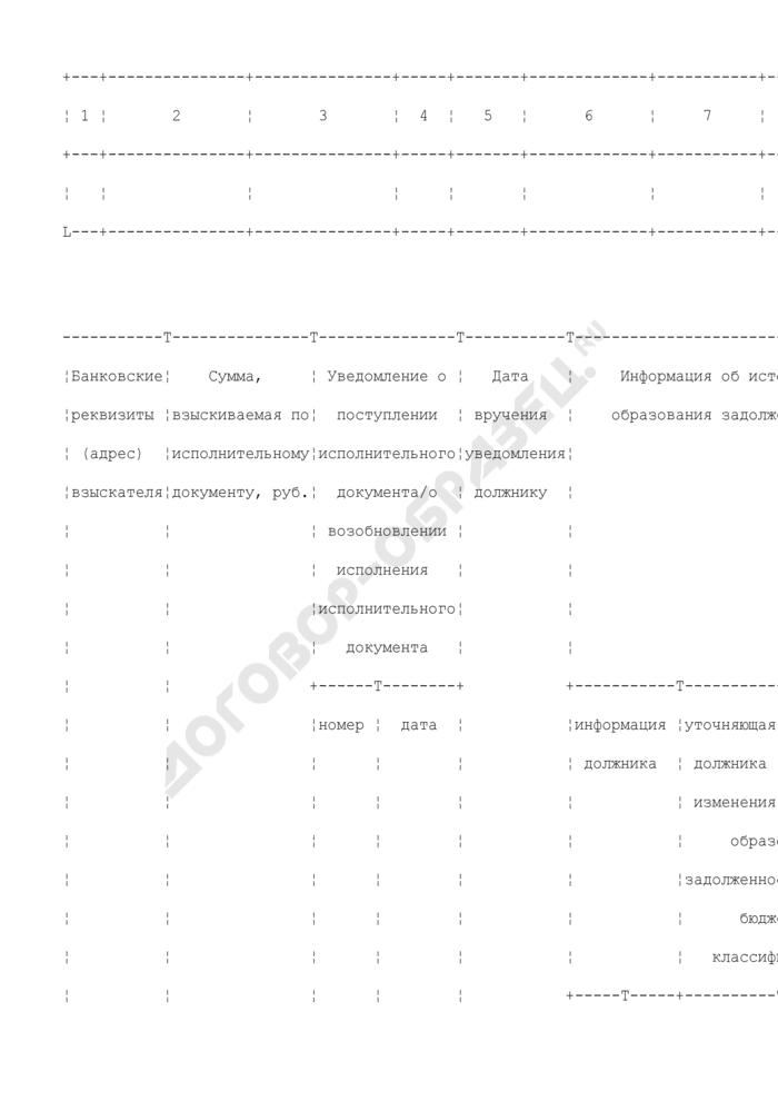 Выписка из журнала учета и регистрации исполнительных документов органа Федерального казначейства. Страница 2