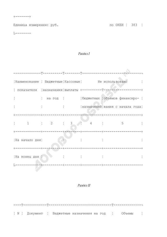Выписка из лицевого счета получателя средств по источникам внешнего финансирования дефицита федерального бюджета. Страница 2