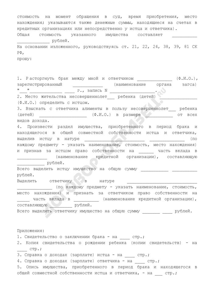 Исковое заявление о расторжении брака, взыскании алиментов и разделе имущества (образец). Страница 2