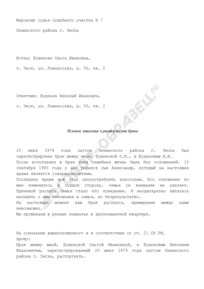 Исковое заявление о расторжении брака (пример). Страница 1