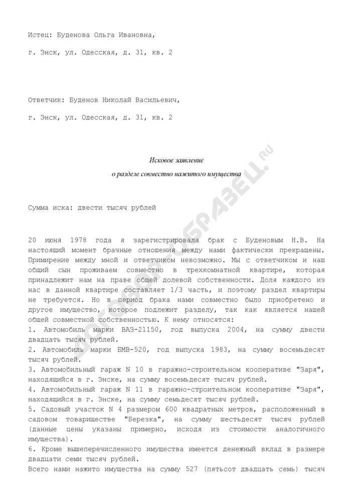 Исковое заявление о разделе совместно нажитого имущества (пример). Страница 1