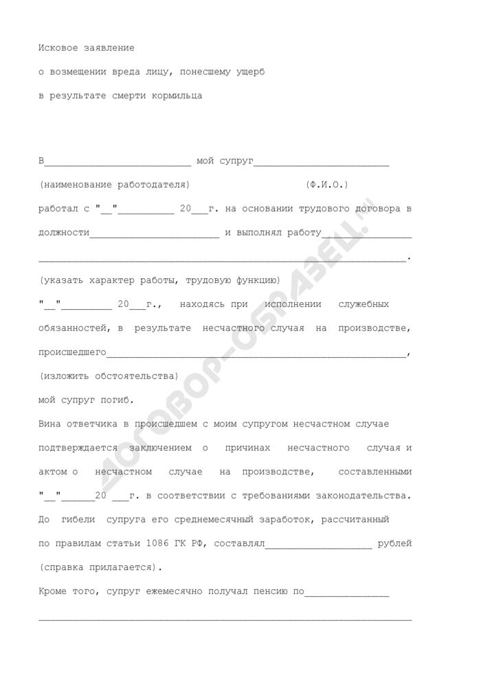 Форма искового заявления о возмещении вреда лицу, понесшему ущерб в результате смерти кормильца. Страница 2