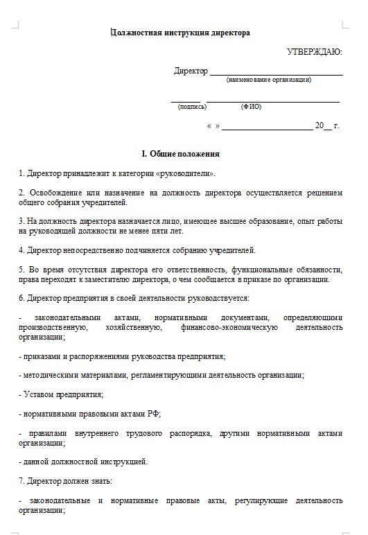 должностная инструкция директора малого предприятия
