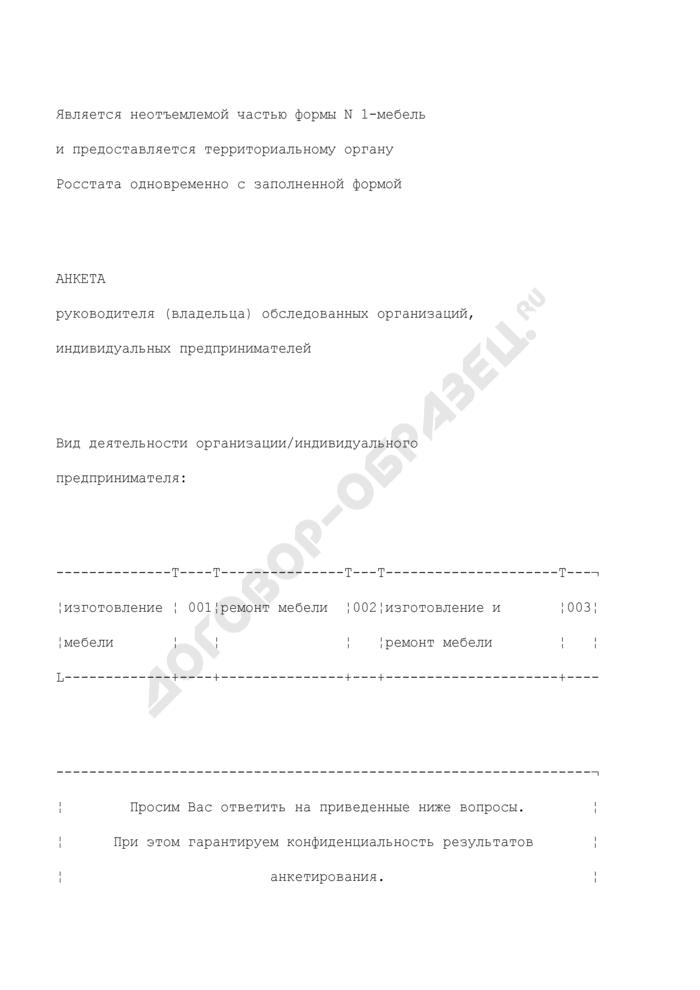 Анкета руководителя (владельца) обследованных организаций, индивидуальных предпринимателей (приложение к сведениям об оказании услуг населению по изготовлению и ремонту мебели. Форма N 1-мебель). Страница 1