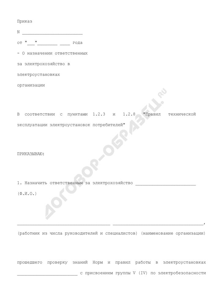 Приказ о назначении ответственных за электрохозяйство в электроустановках организации. Страница 1