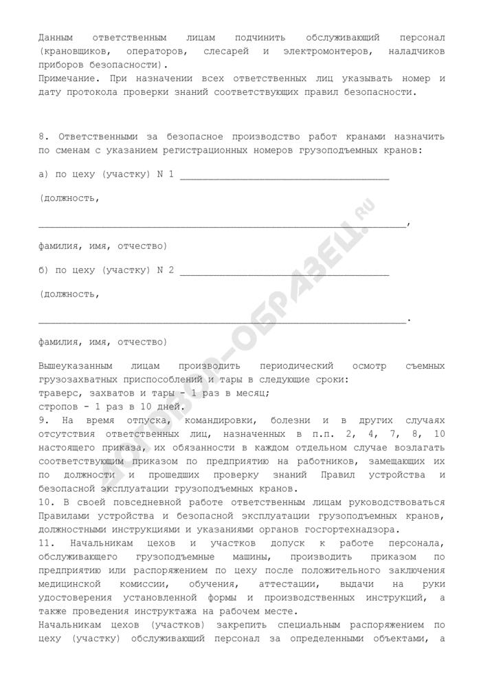 Приказ об организации технического надзора за безопасной эксплуатацией грузоподъемных машин (рекомендуемая форма). Страница 3