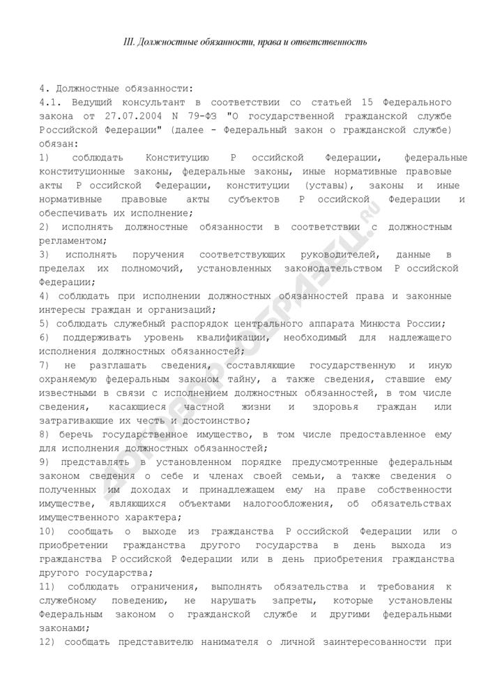 Должностной регламент ведущего консультанта центрального аппарата Минюста России. Страница 3